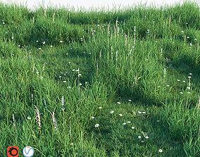 3D Grass set green