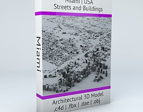 3D model Miami Streets and Buildings