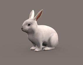 Rabbit 3d model animal
