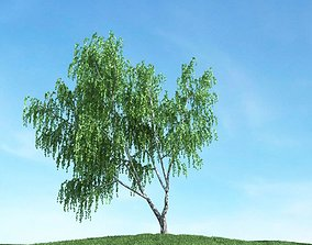 Green Weeping Willow 3D