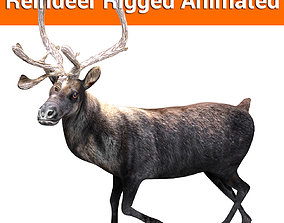animated Black Reindeer rigged animated 3D model