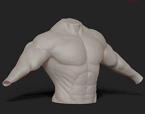 3D model male upper body sculpt