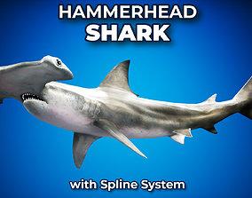 3D asset Hammerhead Shark with Octane and UE4 Support