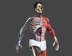 3D asset Motion Capture Male Anatomy
