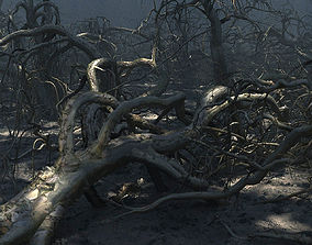 3D Old Forest Pack 30