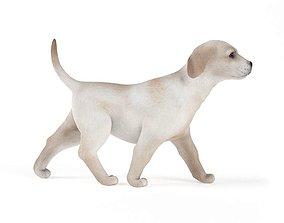 3D model Little Dog Walking