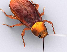 3DRT - Cockroach animated
