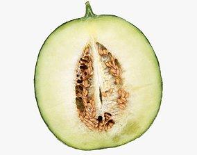 Melon 3D model exotic