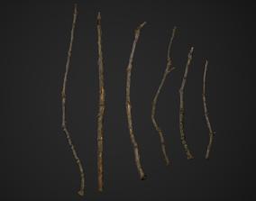 3D asset Oak Branches 4K Photoscanned