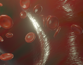 3D model Blood Vessel animated red blood cells