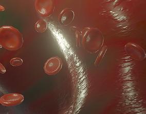 3D model Blood Vessel animated red blood cells