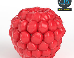3D model PBR Raspberry