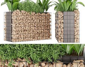 Collection plant vol 135 3D