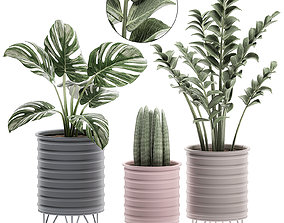 3D model Decorative plants in pots on a stand for the 1