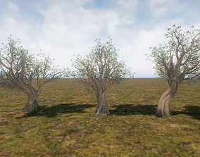 3D asset Low Poly Ashes Tree