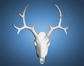 3D model Deer Skull Base Mesh