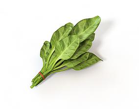 Spinach 3D asset