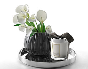 Calla in Vase and Home Candle 3D model spa