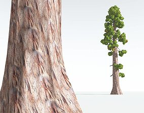 game-ready EVERYPlant Coastal Redwood Cartoon 07 --12