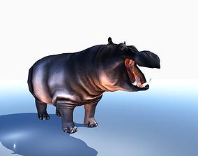 HIPPOPOTAMUS 3D asset animated