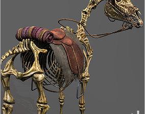 Skeletal Horse 3D asset