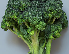 3D Broccoli low and high poly