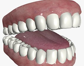 3D model Cartoon teeth and gums