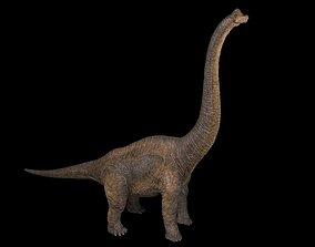 3D asset Brachiosaurus