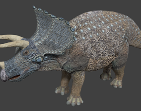 3D asset animated realtime Triceratops