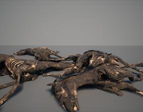 3D asset realtime Dead Horse