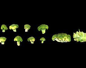 Broccoli 3D asset