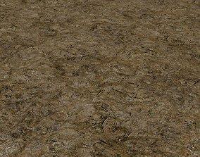 Forest Floor 01 Photoscanned Seamless Texture 3D