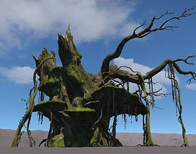 Ancient Tree V19 3D model