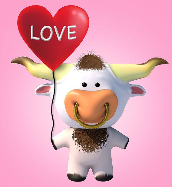 Lovely bull