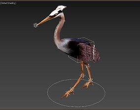 Model 226 - Animal Animated 3D asset