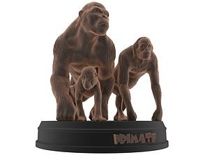 Primate Printable