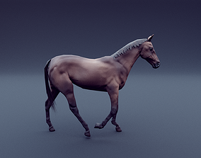 3D model realtime horse animated