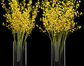Big bouquet orchid oncidium in a modern vase 3D