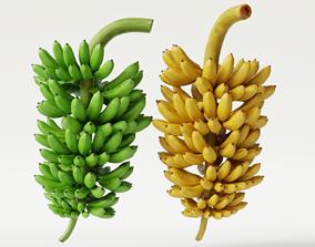 GREEN AND YELLOW BANANAS 3D model