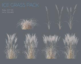 Winter Grass 3D