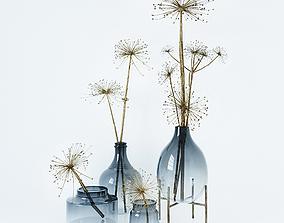 3D Heracleum set in vases
