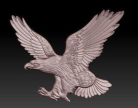 3D bird Eagle