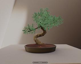 3D model VR Zen Showroom and Art Gallery 2019