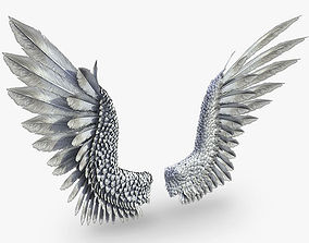Pair of Bird Wings 3DS Max animated