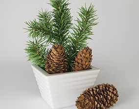 Christmas fir branches and cones 3D