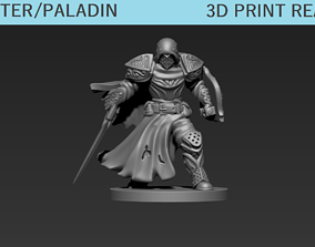 rpg 3D print model Fighter Paladin Mini