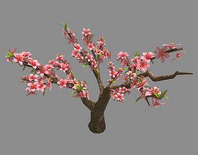 3D model Trees - Peach 25
