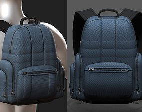 PBR Backpack bag baggage Color 3d low poly 1