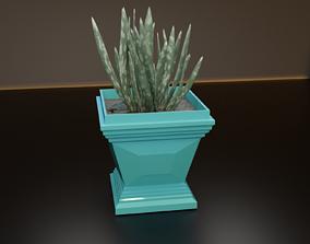 Cubic pot flower plant 3D printable model