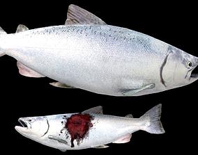 Realistic Salmon 3D asset